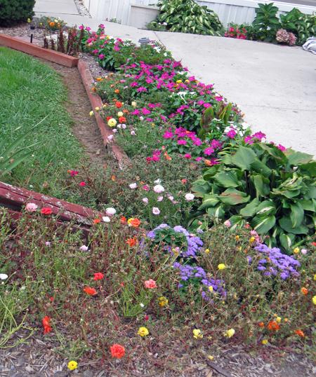 082413flowers.jpg