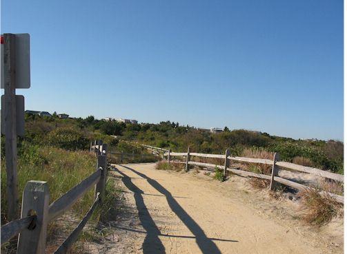 beachpath2.jpg