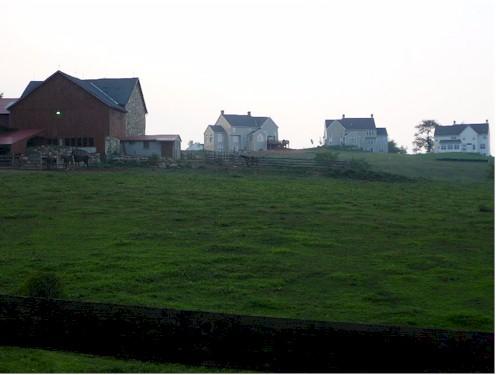 farm3 (2).jpg